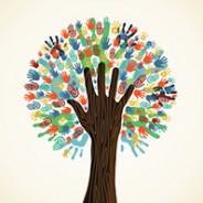 Die sozialen Projekte